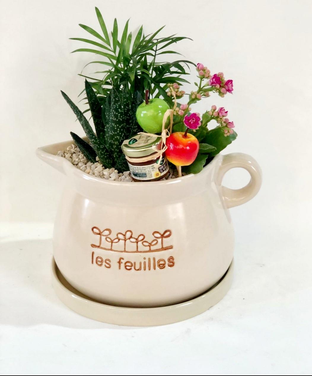 קוקטייל צמחים צבעוניים בכלי