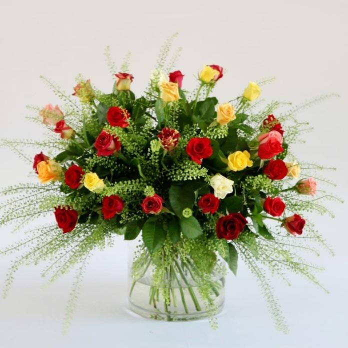 חגיגת ורדים צבעוניים
